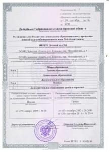 к лицензии (Копировать)
