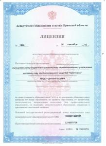 лицензия 1 (Копировать)